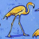 arthus-boy-stretch-sky-flamingo-cocuk-deniz-sortu