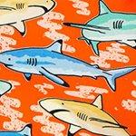 arthus-boy-stretch-orange-shark-cocuk-deniz-sortu