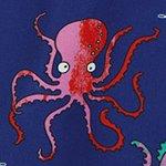 arthus-boy-colourful-octopus-cocuk-deniz-sortu