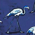 arthus-boy-eclipse-flamingo-cocuk-deniz-sortu