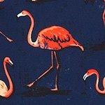 arthus-boy-midnight-flamingo-cocuk-deniz-sortu