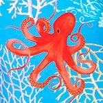 arthus-boy-aqua-octopus-cocuk-deniz-sortu