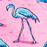 arthus-boy-pink-flamingo-cocuk-deniz-sortu