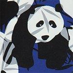 arthus-boy-eclipse-panda-cocuk-deniz-sortu
