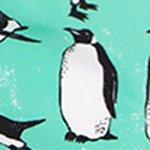 arthus-boy-cascade-pengui-cocuk-deniz-sortu