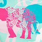 arthus-boy-cascade-elephanta-cocuk-deniz-sortu