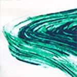 arthus-boy-green-brush-cocuk-deniz-sortu