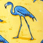 arthus-yellow-flamingo-swim-short