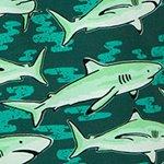 arthus-forest-shark-deniz-sortu