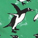 arthus-forest-pengui-deniz-sortu