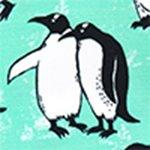arthus-cascade-pengui-deniz-sortu