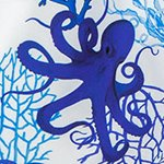 arthus-mono-octopus-swim-short