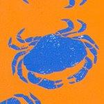 arthus-orange-crab-swim-short
