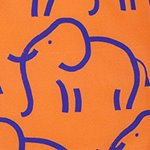 arthus-stroke-elephant-swim-short