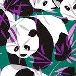 arthus-stretch-forest-panda-swim-short
