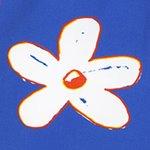 arthus-blue-daisy-swim-short