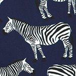 arthus-navy-zebra-swim-short
