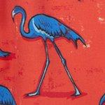 arthus-stretch-magenta-flamingo-swim-short