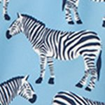 arthus-blue-zebra-deniz-sortu