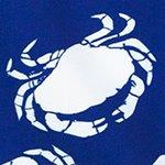 arthus-boy-navy-crab-cocuk-deniz-sortu