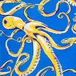 arthus-boy-stretch-provence-poulpe-cocuk-deniz-sortu