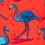 arthus-boy-magenta-flamingo-cocuk-deniz-sortu