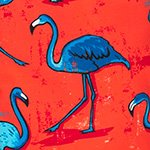 arthus-boy-magenta-flamingo-swim-short-boys