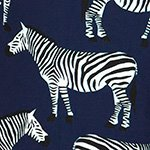 arthus-boy-navy-zebra-cocuk-deniz-sortu