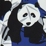 arthus-boy-eclipse-panda-swim-short-boys