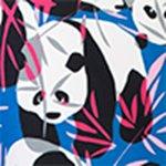 oscar-blue-panda-deniz-sortu